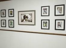 Jung Center Project - Black River Museum